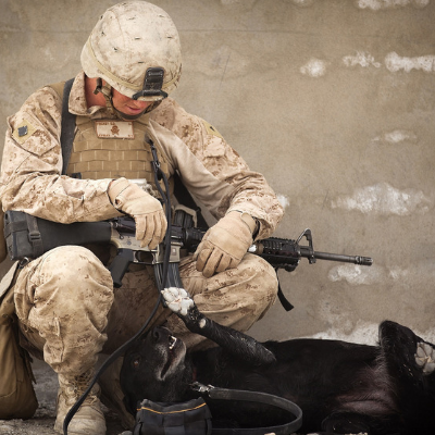 soldier rests