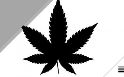 Veterans Talk About Marijuana and the VA