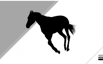General Boykin Helps Launch Fundraiser for New Equine Therapy Service for Veterans with PTSD